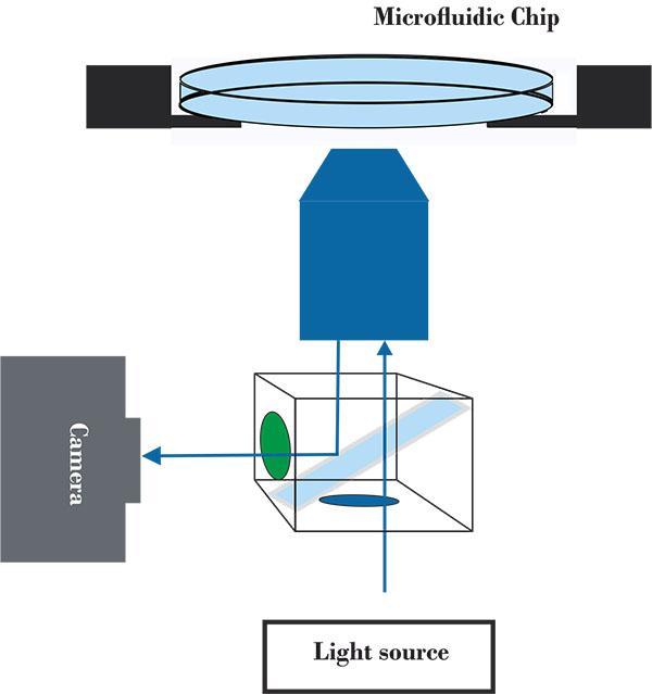 Mikroskopmodul_Zeichnung_web